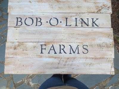 Bob o link farms
