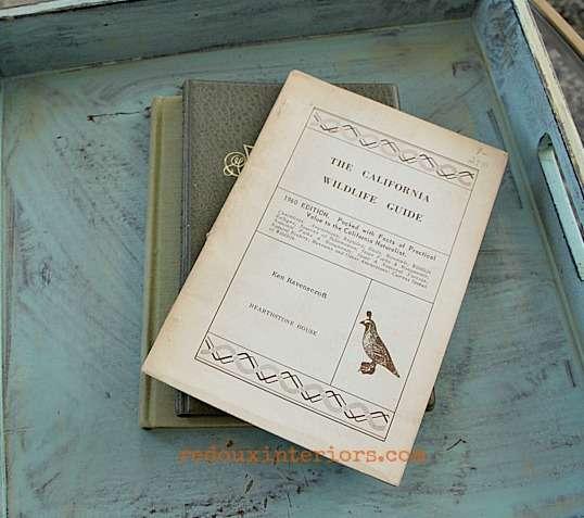 dumpster dove book on wild birds trashy tuesday redouxinteriors